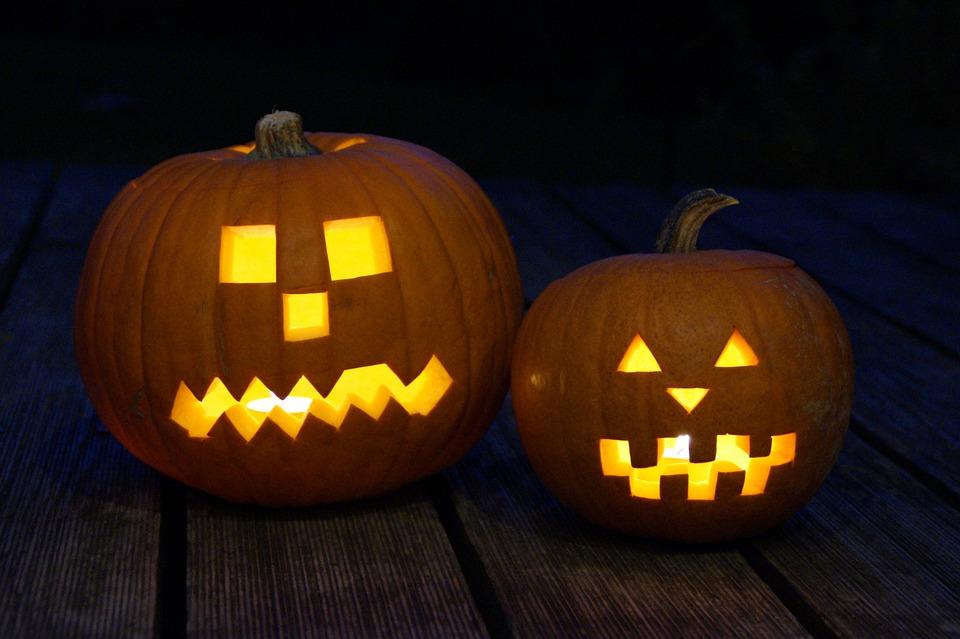 pumpkin-201962_960_720