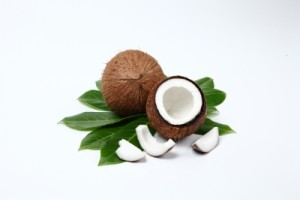 """Coconut"" by Pixomar FreeDigitalPhotos.net"