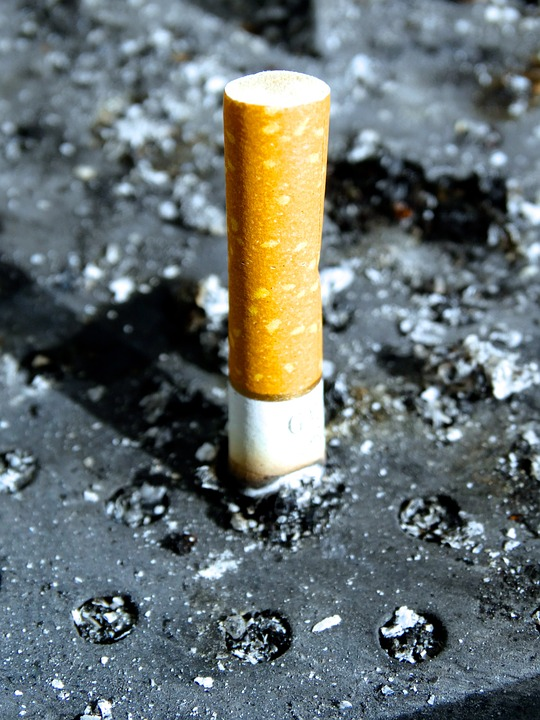 Smoking Cigarette End Cigarette Stub Ash