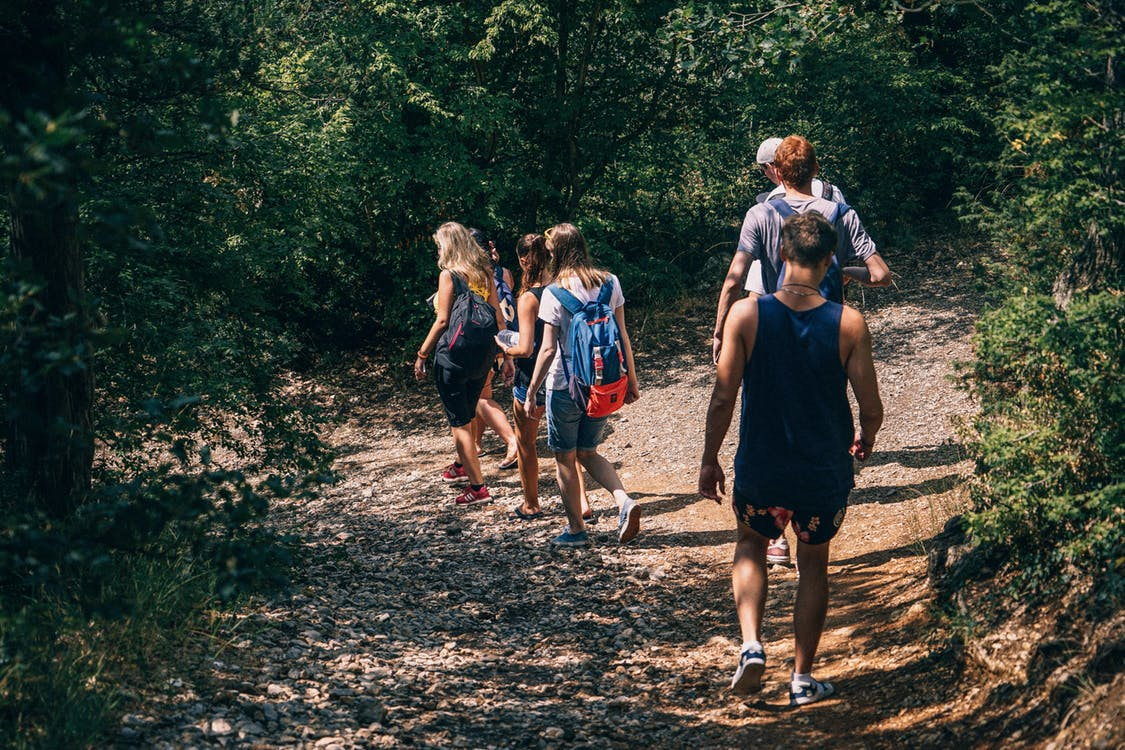 https://www.pexels.com/photo/people-walking-on-dirt-path-in-forest-at-daytime-200453/